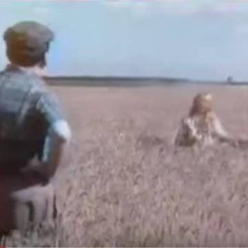 1976 - Rivoire et Carret fabrique des pâtes comme personne (Le champs 1)