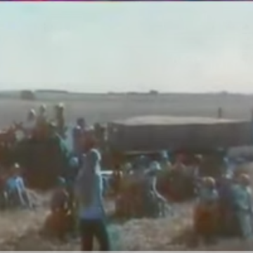 1976 - Rivoire et Carret fabrique des pâtes comme personne (Le champs 2)